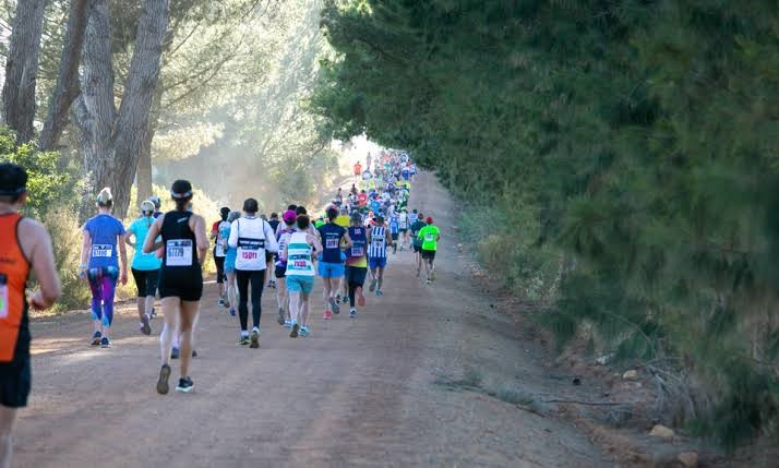 Sportsmans Warehouse Winelands Half Marathon Virtual Run 2020